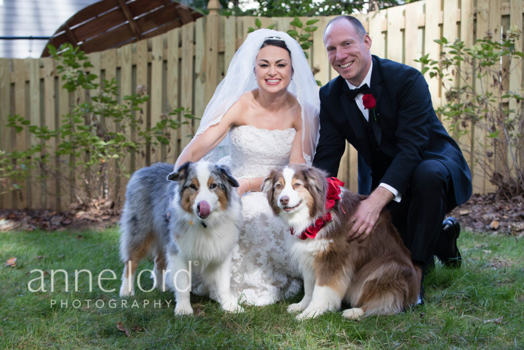 bride-groom-wedding-portraits-with-dogs